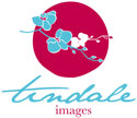 tindale images